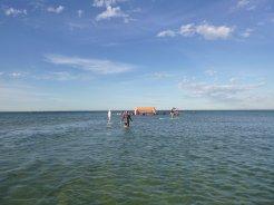 mentone swim 1